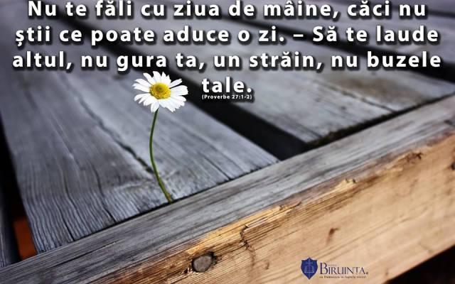 proverbe 27